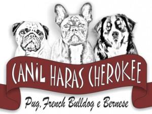 Canil Haras Cherokee